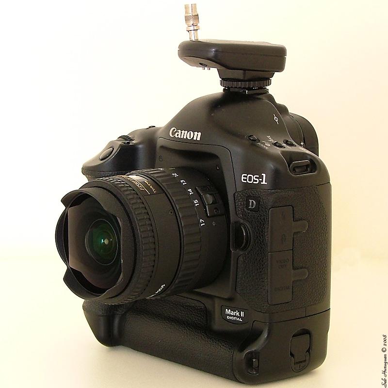 Canon_EOS_1DmarkII_-_Tokina_10-17_fisheye_-_Cactus