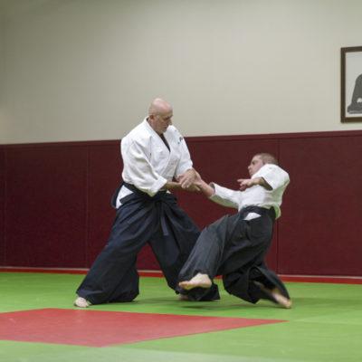 aikido-bruges-bernard-borie-club-stage-sebastien-huruguen-photographe-bordeaux (1)