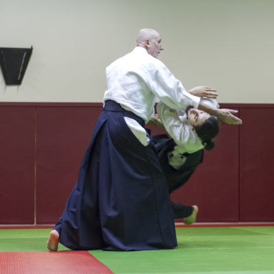 aikido-bruges-bernard-borie-club-stage-sebastien-huruguen-photographe-bordeaux (10)