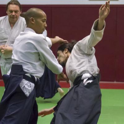 aikido-bruges-bernard-borie-club-stage-sebastien-huruguen-photographe-bordeaux (12)