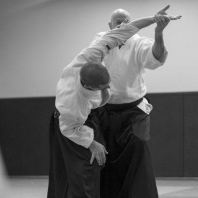 aikido-bruges-bernard-borie-club-stage-sebastien-huruguen-photographe-bordeaux (3)