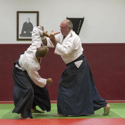 aikido-bruges-bernard-borie-club-stage-sebastien-huruguen-photographe-bordeaux (5)