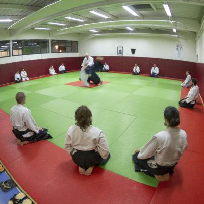 aikido-bruges-bernard-borie-club-stage-sebastien-huruguen-photographe-bordeaux (8)