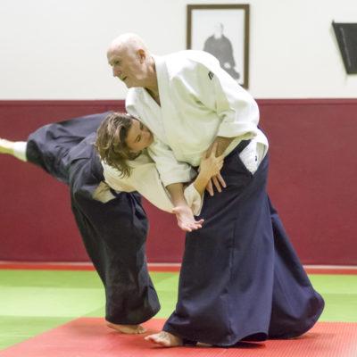 aikido-bruges-bernard-borie-club-stage-sebastien-huruguen-photographe-bordeaux (9)
