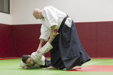 Protégé: Bruges – Aikido – 2014
