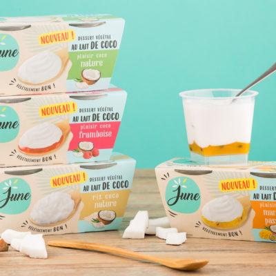 june-pur-plaisir-vegetal-desserts-yaourts-lait-vegetaux-sebastien-huruguen-photographe-packshot-9
